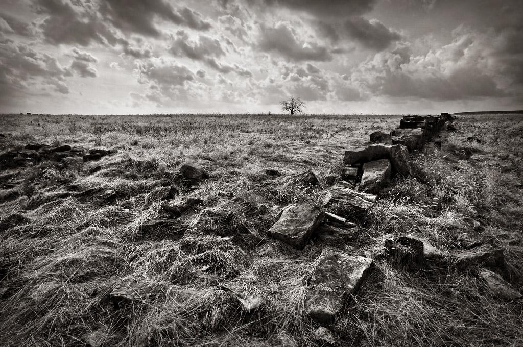 Remnants of limestone walls on a grass-strewn prairie
